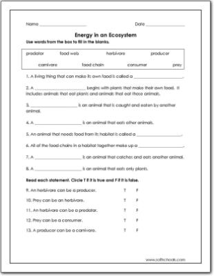 Ecosystems worksheets for 3rd grade